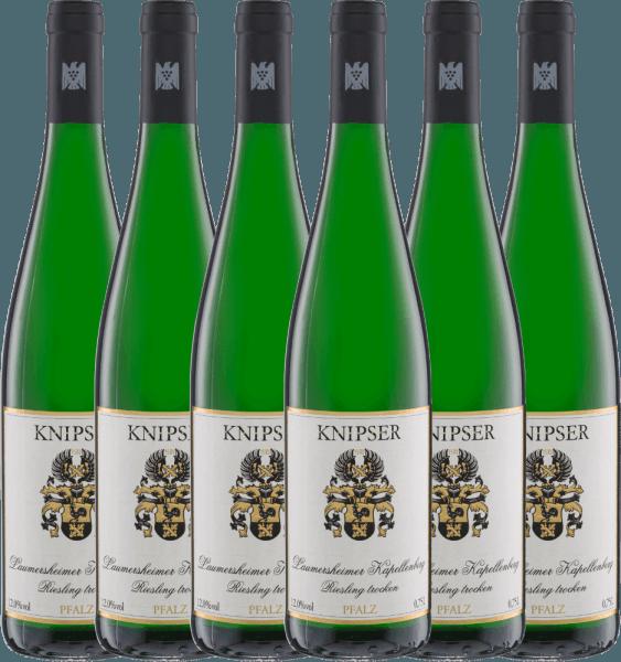 Confezione-vantaggio da 6 bottiglie - Laumersheimer Kapellenberg Riesling 2020 - Knipser