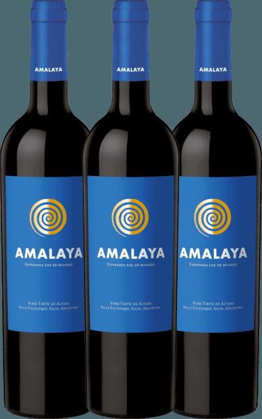 Confezione-vantaggio da 3 bottiglie - Amalaya Tinto 2019 - Bodega Colomé