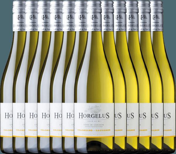 Confezione-vantaggio da 12 bottiglie - Horgelus Blanc 2020 - Domaine Horgelus