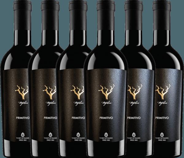 Confezione-vantaggio da 6 bottiglie - Trefilari Primitivo 2019 - Cantina Sampietrana