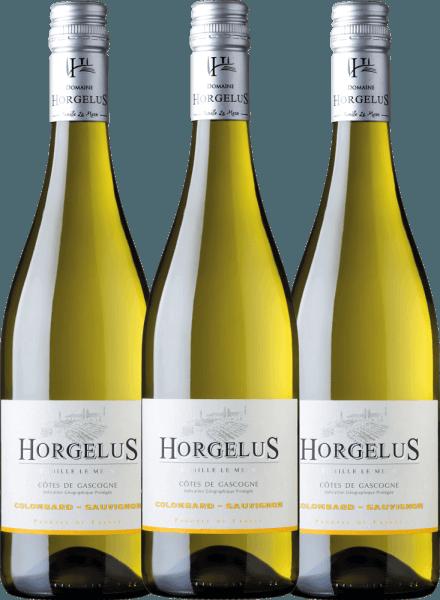 Confezione-vantaggio da 3 bottiglie - Horgelus Blanc 2020 - Domaine Horgelus