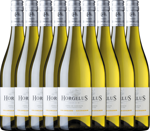 Confezione-vantaggio da 9 bottiglie - Horgelus Blanc 2020 - Domaine Horgelus