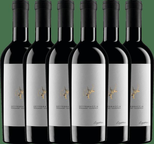 Confezione-vantaggio da 6 bottiglie - Settebraccia Rosso 2016 - Cantina Sampietrana