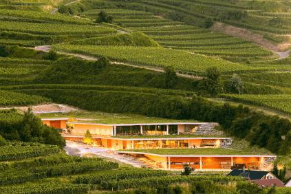Das Weingut Franz Keller