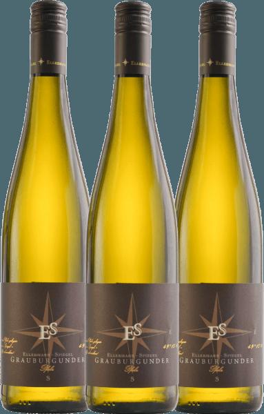 Confezione-vantaggio da 3 bottiglie - Grauburgunder trocken 2020 - Ellermann-Spiegel