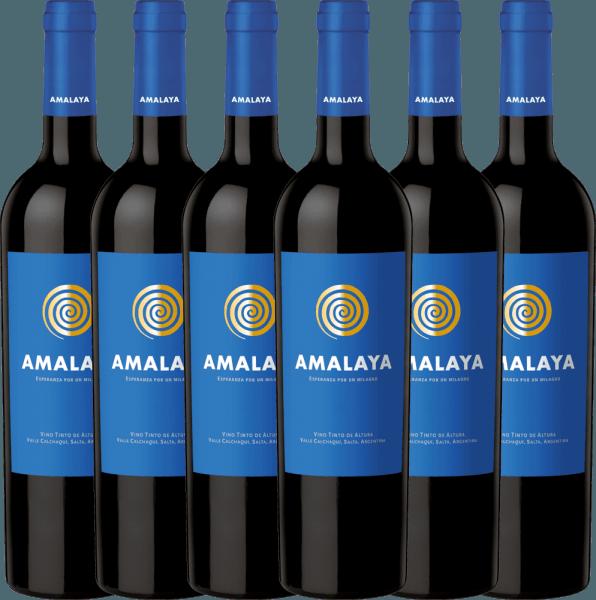 Confezione-vantaggio da 6 bottiglie - Amalaya Tinto 2019 - Bodega Colomé
