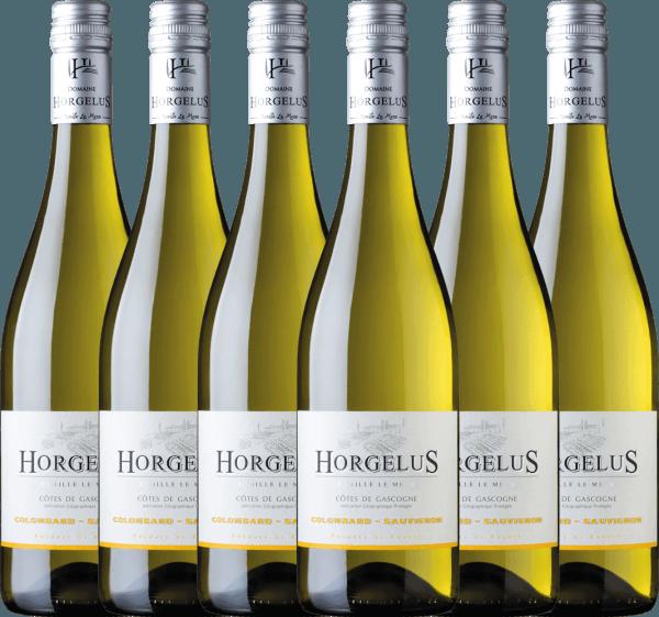 Confezione-vantaggio da 6 bottiglie - Horgelus Blanc 2020 - Domaine Horgelus