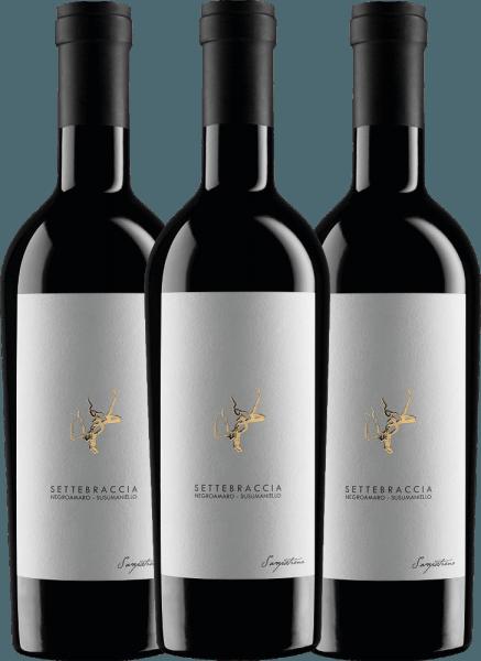 Confezione-vantaggio da 3 bottiglie - Settebraccia Rosso 2016 - Cantina Sampietrana