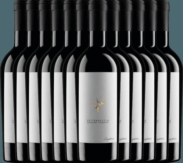 Confezione-vantaggio da 12 bottiglie - Settebraccia Rosso 2016 - Cantina Sampietrana